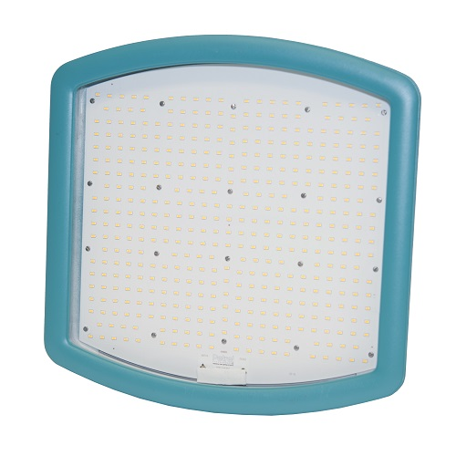 Maxi Area Light LED